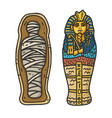ancient egyptian tutankhamun mummy in sarcophagus vector image vector image