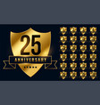 premium golden anniversary logotype emblem big set vector image vector image