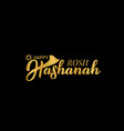 rosh hashanah jewish new year hand lettering vector image