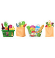 supermarket grocery bags shopping baskets and vector image vector image