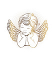 cute little angel with closed eyes with wings vector image