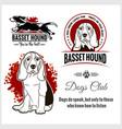 basset hound - set for t-shirt logo vector image vector image