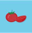 creative tomato and tomato half vector image