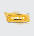 modern summer new collection vector image