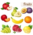 set cartoon food icons fruits isolated on vector image vector image