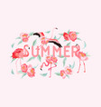 tropical flamingo summer flyer banner with peony vector image vector image