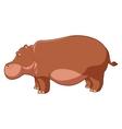 Cartoon brown hippo vector image