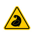 attention hen dangers of yellow road sign chicken vector image vector image