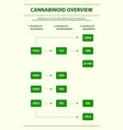 cannabinoid overview vertical infographic vector image vector image