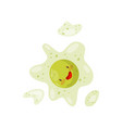 cute funny cell with nucleus humanized bacteria vector image