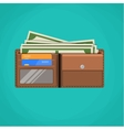 Flat wallet card and cash vector image