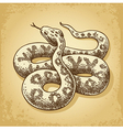 Ground Snake vector image vector image
