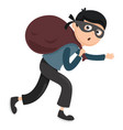 of thief vector image