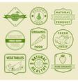 set healthy food badges and logos vector image