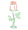 Doodle color abstract red rose vector image