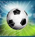 football or soccer goal vector image vector image