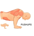man performing push-UPS vector image