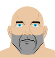 man with blue eyes Mans head on white background vector image