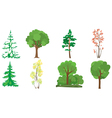 set of 8 trees vector image