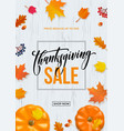 thanksgiving sale poster autumn pumpkin promo vector image vector image