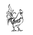 Black sketch drawing of rooster Chinese New Year vector image