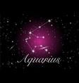 aquarius zodiac constellations sign vector image vector image