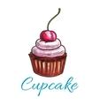 Chocolate tart cupcake icon vector image vector image