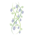 Doodle color abstract handdrawn vine grape vector image vector image