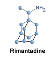Rimantadine vector image vector image