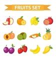 Fruit set Fruits icon flat vector image