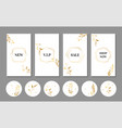 luxury stories templates and icons for instagram vector image vector image