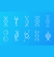 set dna icons showing helical molecule vector image