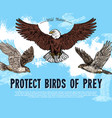 sketch poster for birds of prey protection vector image vector image