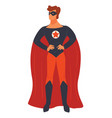 super hero male character wearing mask and mantle vector image