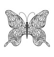 butterfly decorative ornament in doodle style vector image