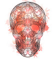 contour of a sugar skull wit vector image