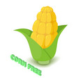 corn allergen free icon isometric style vector image vector image