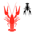 Crayfish vector image vector image