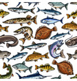 fish seamless pattern for seafood design vector image vector image