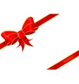 Parcel Bow vector image