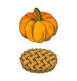 pumpkin vegetable and baked pie icons set vector image vector image