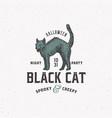 spooky creepy black cat halloween night party vector image