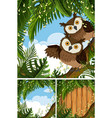 three scenes with owls in the woods vector image vector image