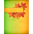 Autumn leaves on old crumpled paper with banner vector image vector image