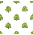 canadian maple canada single icon in cartoon vector image