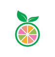 circle fruit leaf icon logo vector image