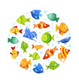colorful tropical marine fishes seamless pattern vector image vector image