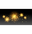 Gold glowing stars and effects vector image vector image