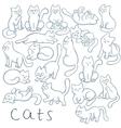 hand drawn set cats in different poses vector image