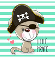 little puppy pirate vector image vector image